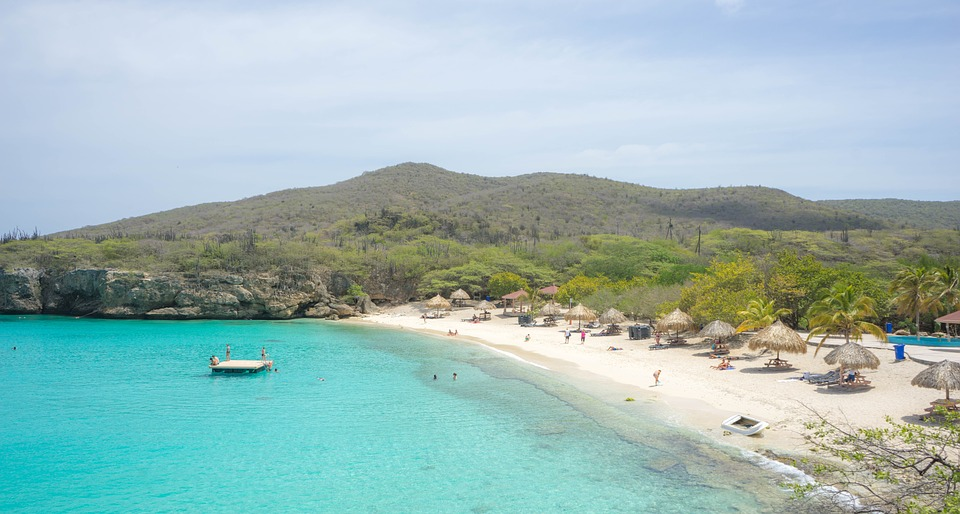 Grote Knip 3