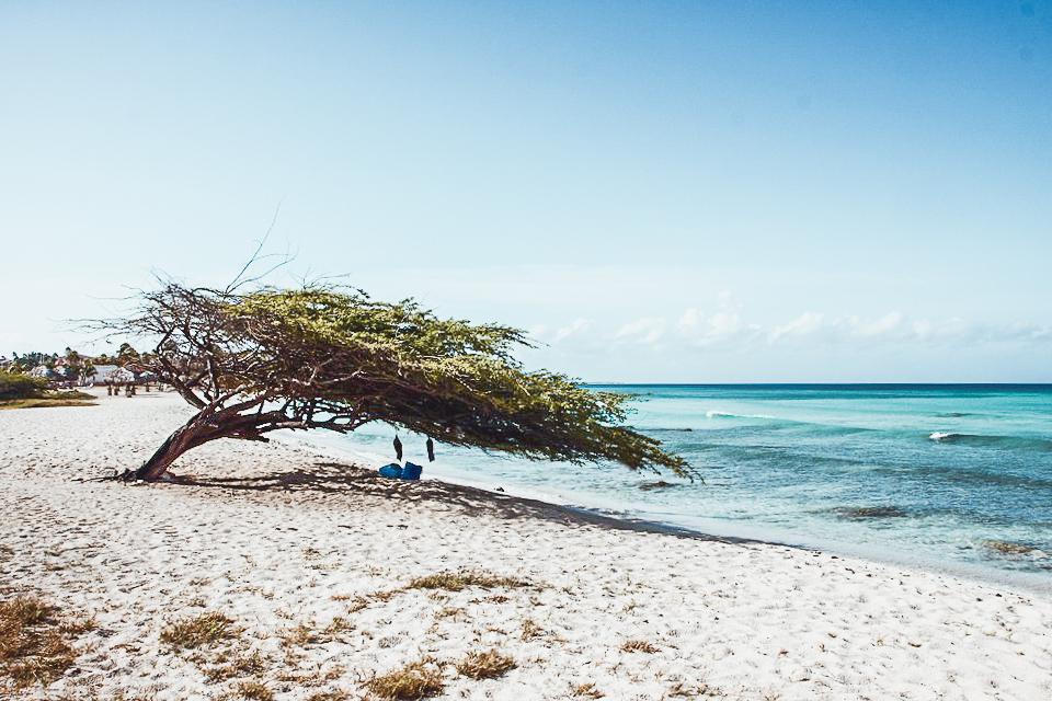 beach-26016_960_720-2