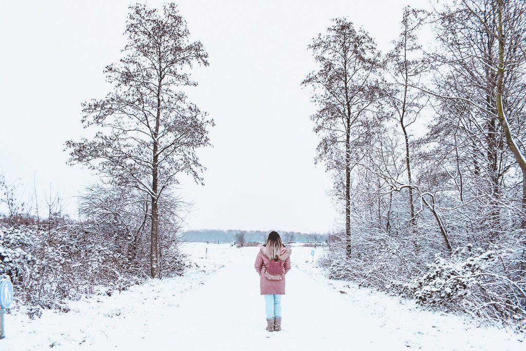 Sneeuw Rotterdam Winter Casa Borita
